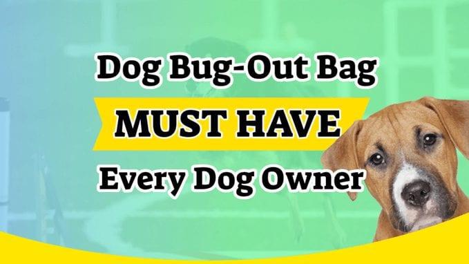 Dog Bug-Out Bag